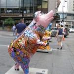 Hamward Bound Pig Cincinnati Ohio