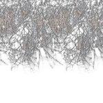 Insta Theme Background Border - Spider Web