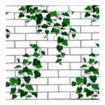 Corobuff - White Brick & Ivy