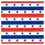 Corobuff - Patriotic Stripes backdrop