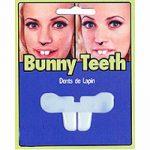 Costume Plastic Bunny/Buck Teeth