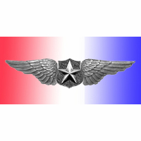 Pilots Wings Pin