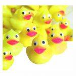 Mini Rubber Ducks