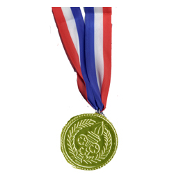 Gold Medal on Patriotic Ribbon