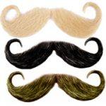Handle Bar Moustache