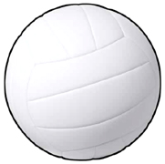 Volleyball party supplies