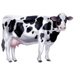 """34.5"""" Jointed Cow Cutout"""