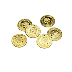 Gold Pirate or Casino Coins