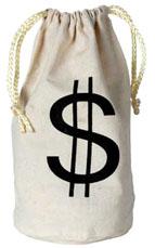 Fabric Drawstring Money Bag
