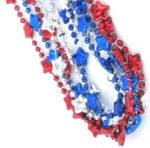 Patriotic Themed Party Supplies: Fourth of July, Labor Day, Memorial Day, & Veteran's Day
