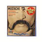 Muskateer Mustache