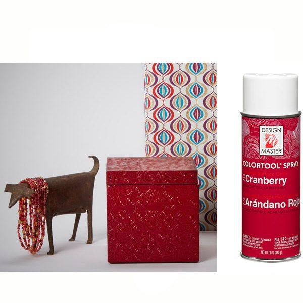 Cranberry Design Master Spray Paint