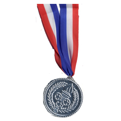 Silver Medal on Patriotic Ribbon