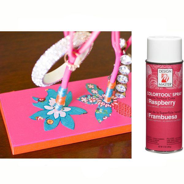 Raspberry Design Master Spray Paint
