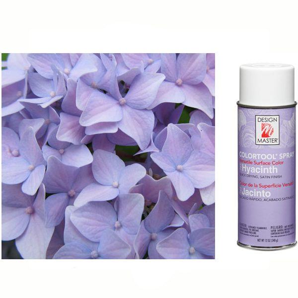Hyacinth Design Master Spray Paint