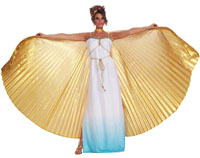 Theatrical Wings - Gold