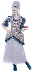 Marie Antoinette Dress and cobwebs costume