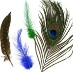 Deluxe Feather Assortments