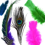 Deluxe Feather Assortment - Craft and Sport
