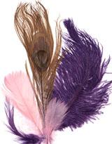 Deluxe Feather Assortment 2 - Craft & Sport