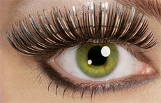 Eyelashes long luxurious black gold or black silver