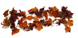 6 Foot Fall Silk Grape Leaf Garland w/Berries