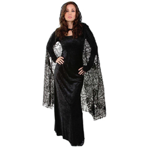 Spiderweb cape - sheer lace
