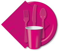 Hot Magenta Cups, Plates, Napkins, Tableware