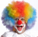 Afro wig Rainbow Clown Wig