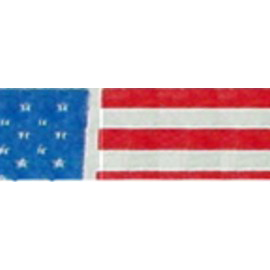 Tyvek Identification Wristbands - Patriotic Flag