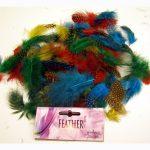Multi color assort of Guinea feathers