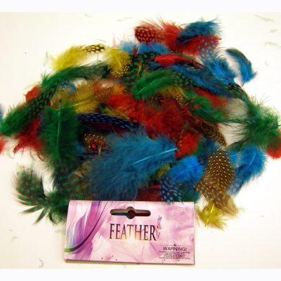 Multi color assort of Guinea feathers