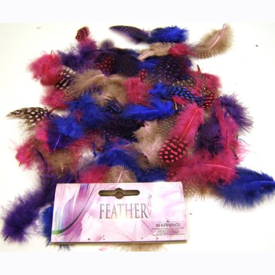 Guinea Feather Assortment