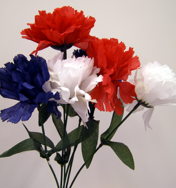 Red, White and Blue Carnations on Stem