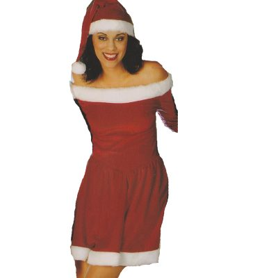 Ms. Santa Dress for Santacon