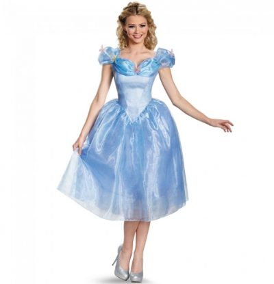 Cinderella Adult Costume