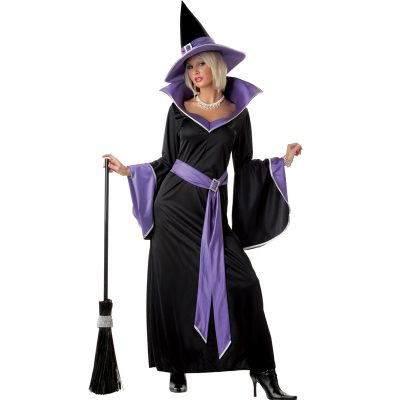 Incantasia Glamour Witch Adult Costume