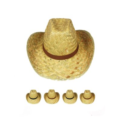 Straw Western Hat