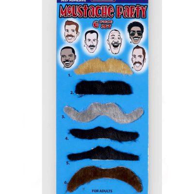 6 Piece Assorted Moustache Set