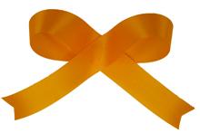 Tropical Orange Acetate Ribbon