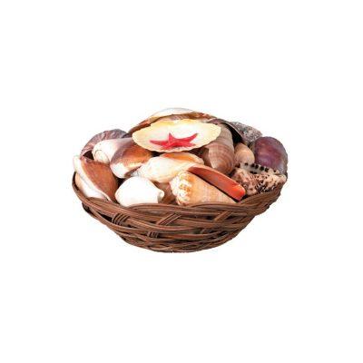 Round Basket of Seashells