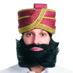 Costume Super Deluxe Guru Styled Beard