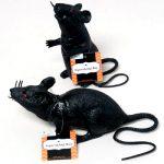 Black Rubber Squeaking Rat