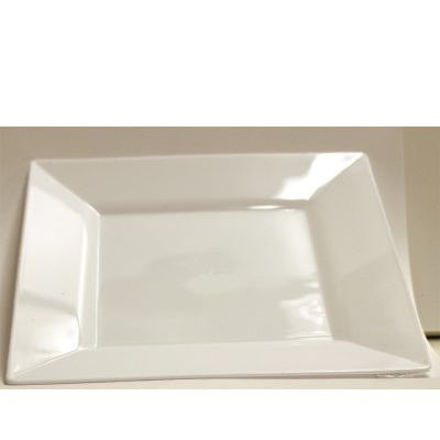 White Square Plastic Plates - 10 Pack