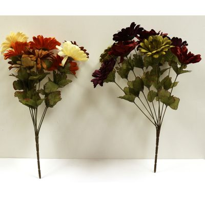 Fall Zinnia Bush