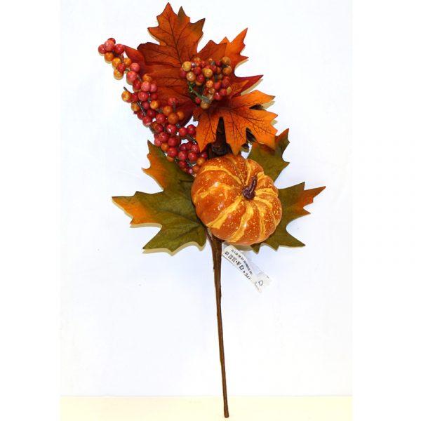 Fall Mixed Pumpkin Berry Pick