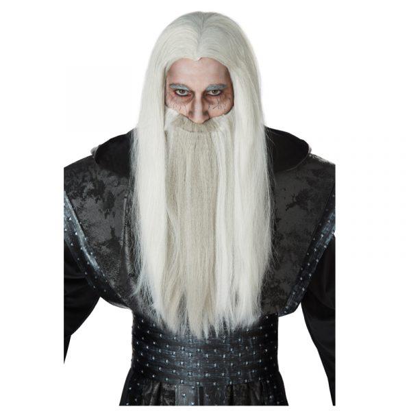 Gray Wizard Wig with Beard