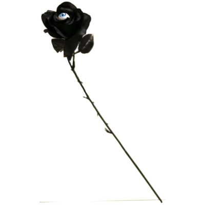 Black Silk Long Stem Rose with Eyeball