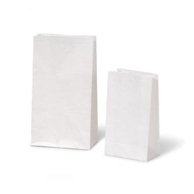 White Paper Craft Gift Bags