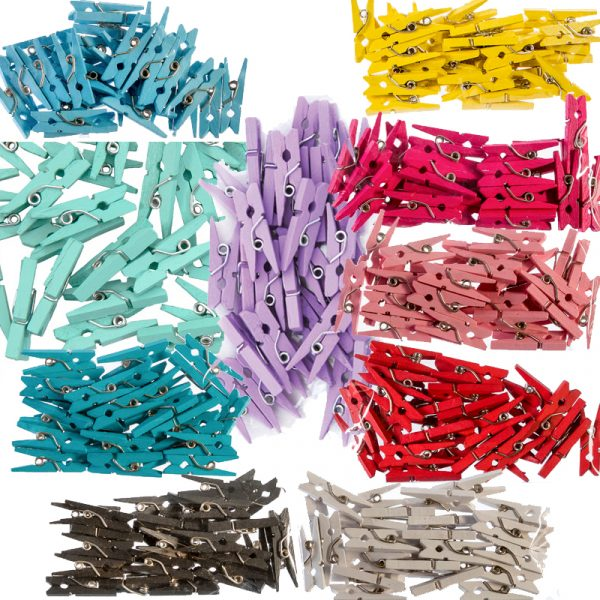 1 Inch Solid Color Craft Mini Clothespins